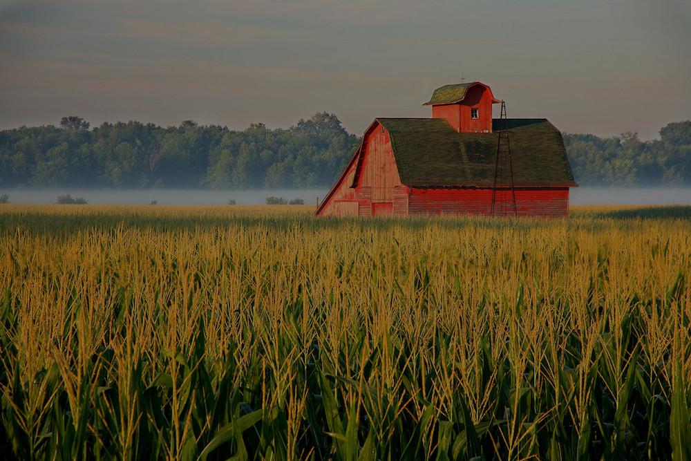 farm and crop insurance Sacramento CA
